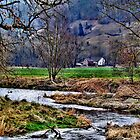 Haus am Fluss by harietteh