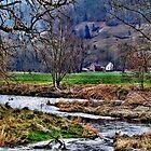 Haus am Fluss by harietteh