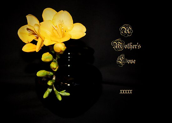 Mother's Day Freesia by AnnDixon