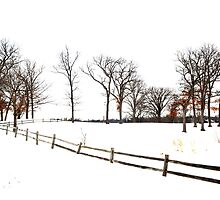 Midwest Winter Landscape by Brian Gaynor