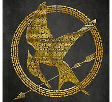 Hunger Games Typography by SkahfeeStudios
