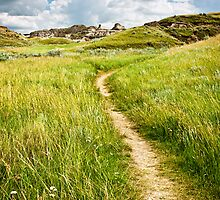 Trail in Badlands in Alberta, Canada by Elena Elisseeva