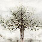 Tree VII by Bjorn Eek