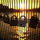 Love Locks in Paris by bposs98