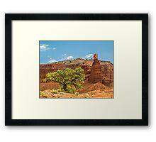 Desert Survivor - Capitol Reef NP Framed Print