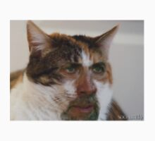 Nick cage cat by soapycord