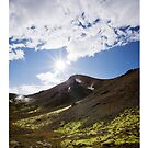Landmannalaugar I - iPad Case by Natalie Broome