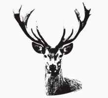 B/W Deer by dreamyoung