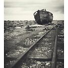 Dungeness - iPad Case by Natalie Broome