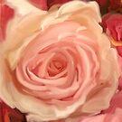 blush #4 by CaptMummy