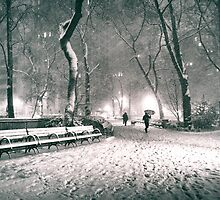 Snow - Madison Square Park - New York City by Vivienne Gucwa
