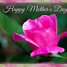 A Rose for Mother's Day by Anita Pollak