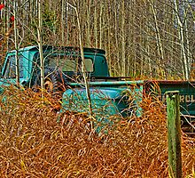 Old Pick up Truck in the Fall Grass by rharrisphotos