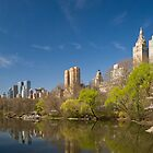 Central Park West in Spring by Ellen McKnight