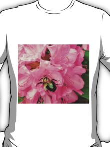 Bumble in Pink T-Shirt