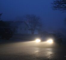 Fog Caught in the Headlights by Gilda Axelrod