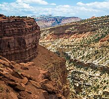 Panorama Point at Capitol Reef by Kenneth Keifer
