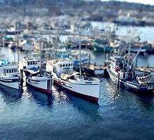 Mini Boats 4 - Tilt Shift by Scott Heffernan