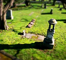 Mini Cemetery 3 - Beetlejuice - Tilt Shift by Scott Heffernan