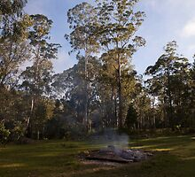 Kangaroo Valley - Smoke Signals by Timothy Kenyon