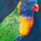 Rainbow Lorikeet by Karen  Hull