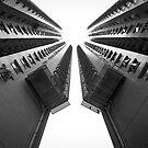 Looking Up by fernblacker