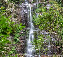 Minnamurra Falls by candysfamily