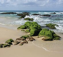 Rocks on Sth Kingscliff .. by gail woodbury