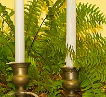 Candles and Fern by Joy  Rector