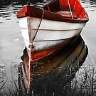 Red Boat by capecodart