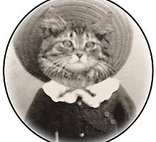 vintage hat cat by Rob Cox
