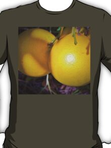 Upcoming harvest T-Shirt