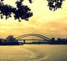 Sunset Sydney by PerkyBeans