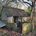 Deserted  Shed by relayer51