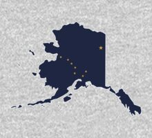 Alaska Flag Map by cadellin