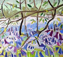 Bluebell Symphony by Jennifer Wyse