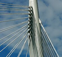Cables on a Bridge by rhamm