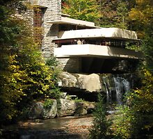 Falling Water by Peter Dials