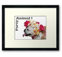 Party Animal!  Bulldog with Flower Bonnet Framed Print