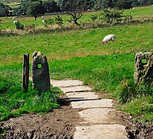 Ancient Stone Gate Posts, Upper Booth by Rod Johnson