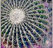 Barrel Cactus IV by Roger Passman