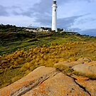 Point Hicks Lighthouse by Harry Oldmeadow