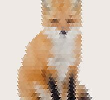 Abstract Fox by britaly