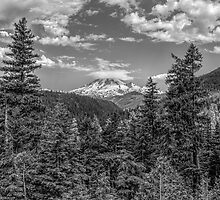 Mt. Rainier by JamesA1