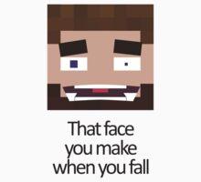 When you fall - Minecraft Meme by grimradke