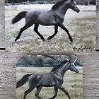 "Unicorn ""Brynne"" - fridge magnet by louisegreen"