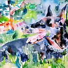DOBERMAN - watercolor portrait by lautir