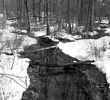 Old Woman Creek Black And White by MSRowe Art and Design