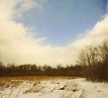 Old Woman Creek - Snowy Meadow by SRowe Art