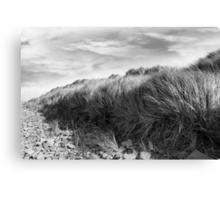 dramatic rocky beale beach Canvas Print